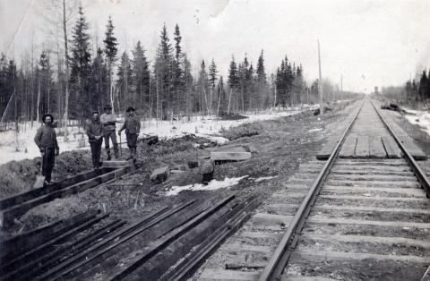 Great Northern Railroad tracks from Thief River Falls to Warroad, Minnesota